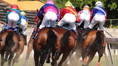Horse Racing: Winning Odds in Your Favor