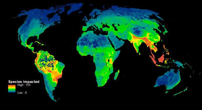 Este mapa muestra las zonas calientes de la biodiversidad, donde la caza furtiva y la deforestación amenazan más a las especies. / James Allan et al.
